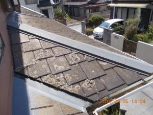 屋根 汚れ 埼玉県 蓮田市 白岡 バイオ洗浄 現状
