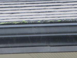 軒天 台風 火災保険 外壁塗装 屋根塗装 上塗り 中塗り 下塗り 3回塗 埼玉県 蓮田市 伊奈町 白岡市 北本市 久喜市 屋根 汚れ