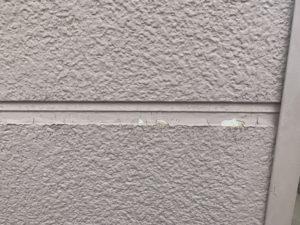 加須市屋根外壁塗装 現調2