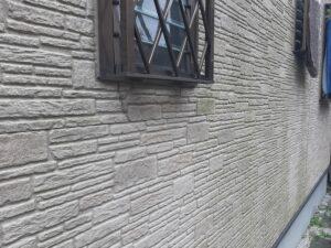 春日部市 外壁 コケの付着 塗膜退色